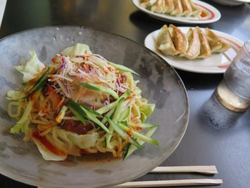 冷やしタンタン麺と餃子