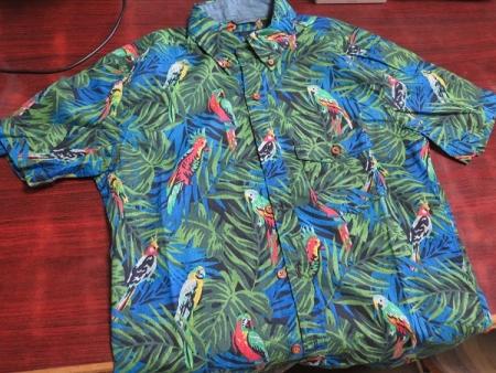 鳥のシャツ