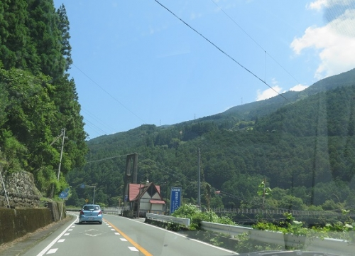 静岡の山の中