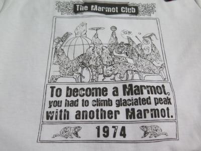 マーモットTシャツ