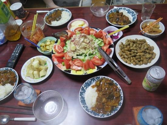 夏野菜カレーとミョウガ入りサラダ