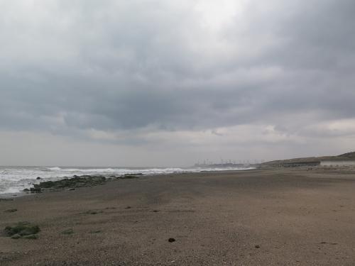 御前崎 尾高海岸