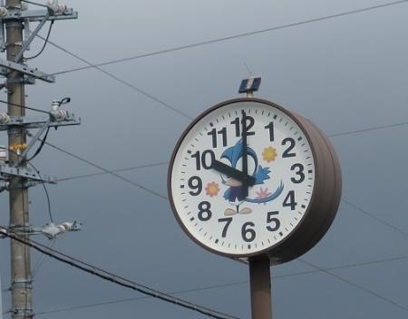 サンコウチョウの時計