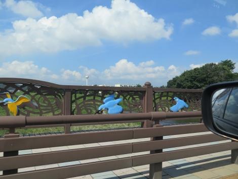 カワセミちゃんの橋