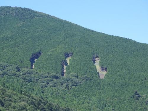 山梨 モンスターエナジーの山
