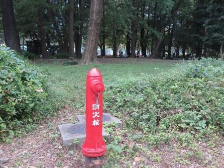 日比谷公園 消火栓
