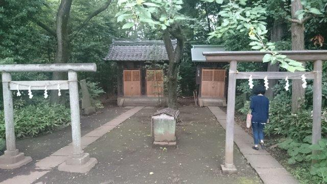 石神井6月 (3)