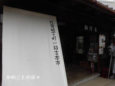 CIMG3437-s.jpg