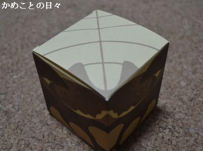 DSC_0528-k.jpg
