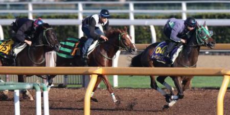 【天皇賞秋】それでは、安田記念とマイルCSを制した馬の圧倒的天皇賞秋成績をご覧ください。