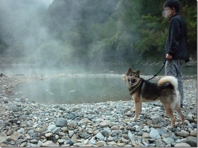 201610熊野詣旅08-04