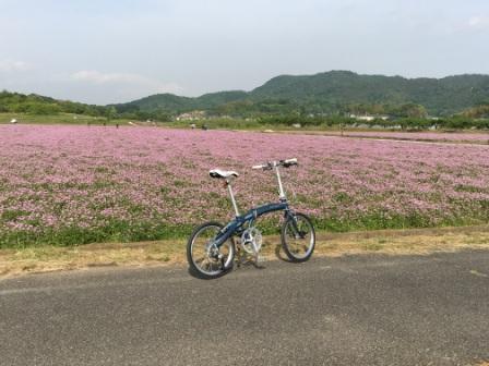 201_5_7_Mu-P9_KURASHIKI_1.jpeg