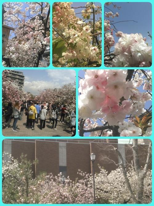 16-04-14-16-41-04-188_deco.jpg