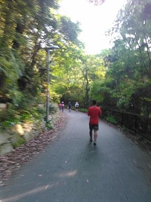 京滋トレイル46