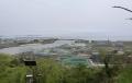 5月2日日和山よりこんなもん?