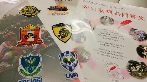 栃木のスポーツチーム