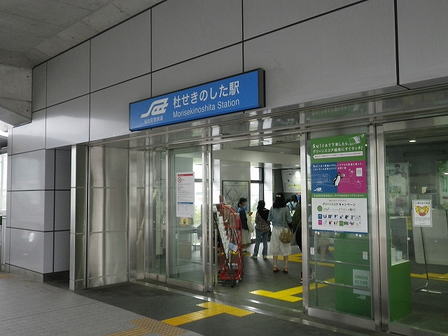 IMGP4665.jpg