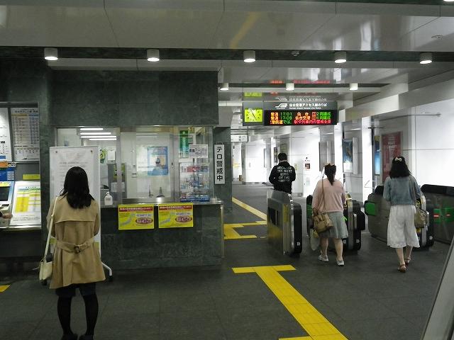 IMGP4666.jpg