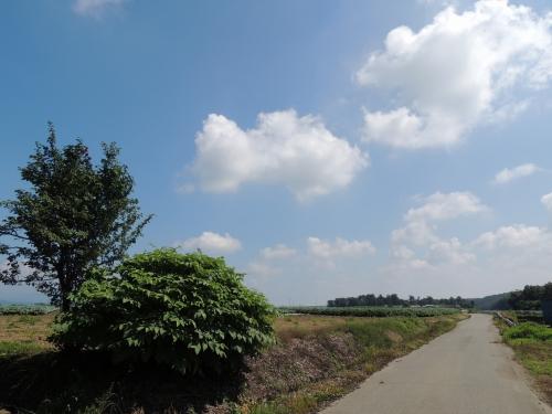 DSCN3234.jpg