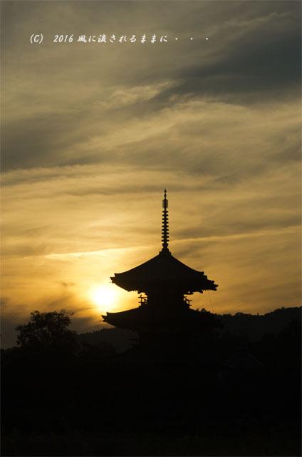 2016年10月15日撮影 奈良・法起寺 夕景とコスモス7