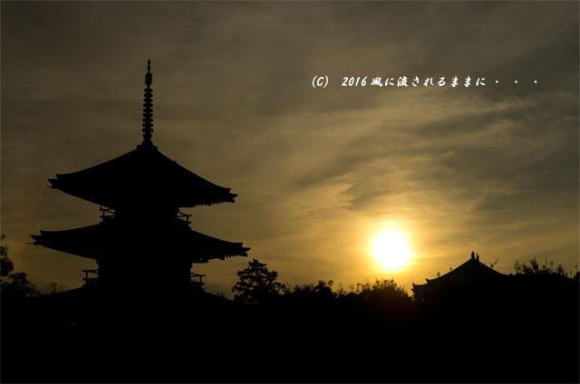 2016年10月15日撮影 奈良・法起寺 夕景とコスモス2
