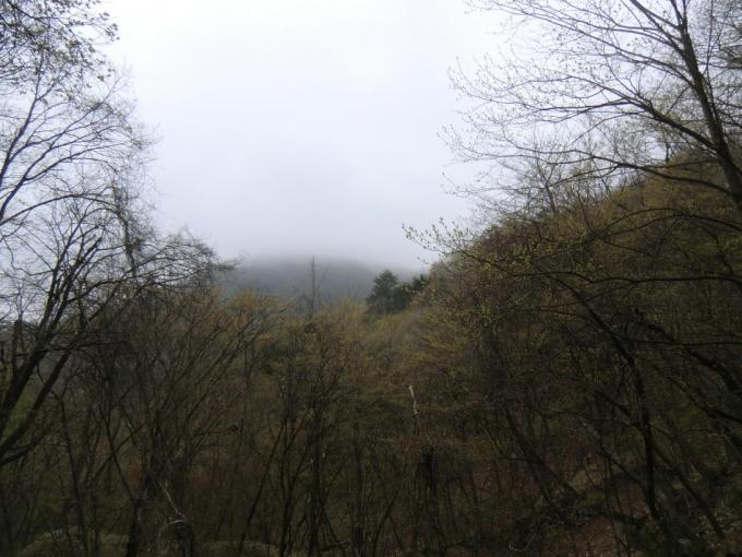 薬師岳は霧の中か