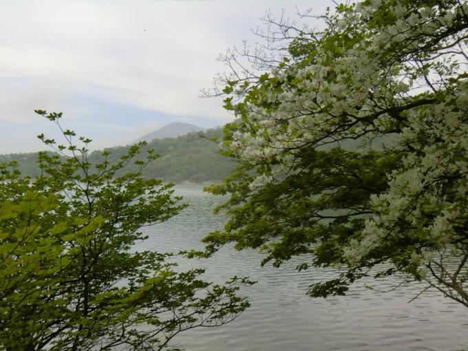 小沼から黒檜山