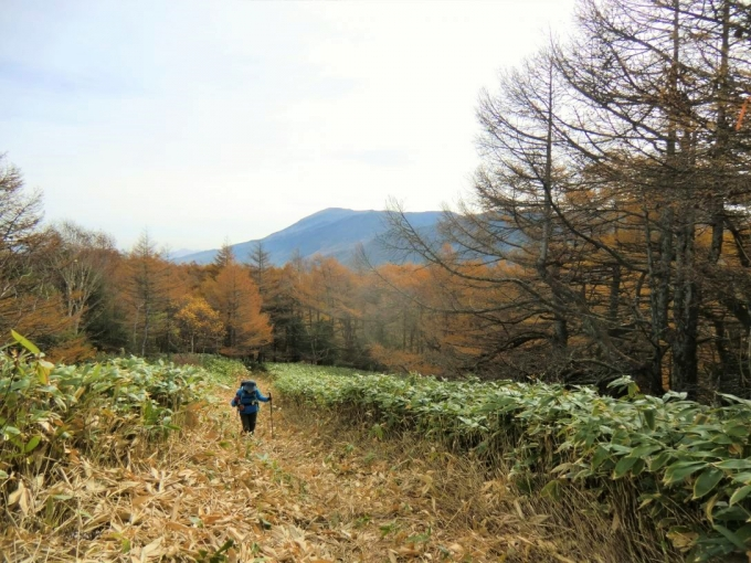 浅間山を背に登る