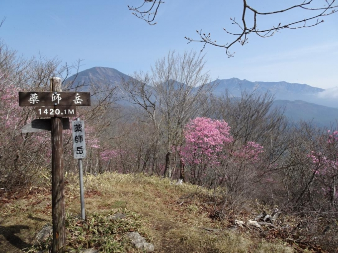 薬師岳山頂から