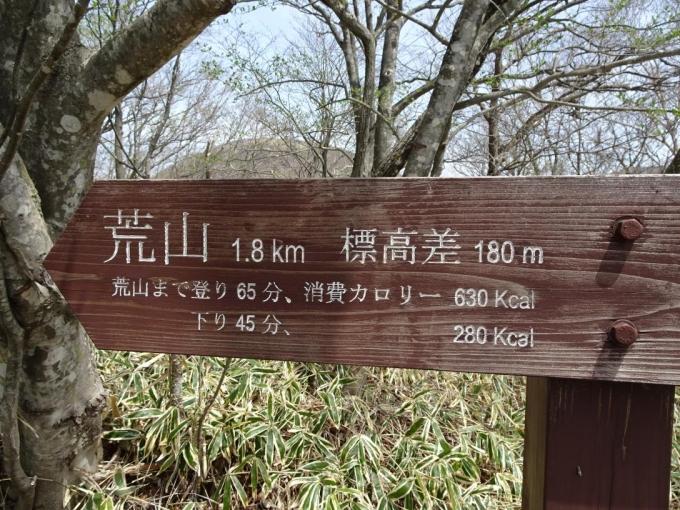 軽井沢峠から