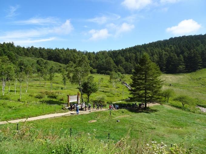 山彦荘から入笠湿原