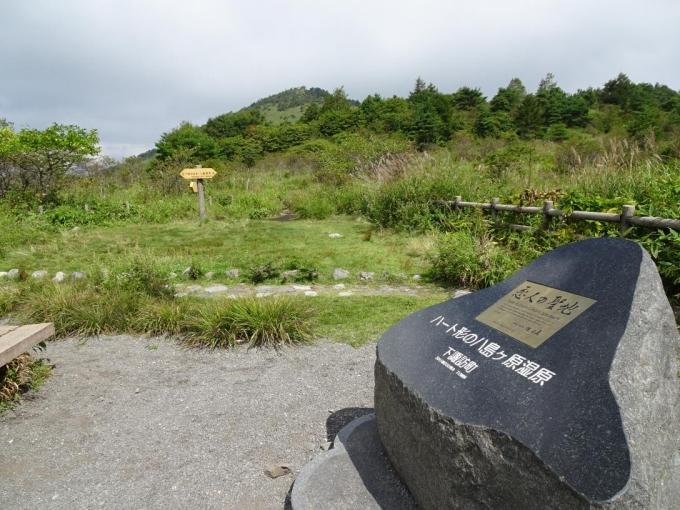 八島湿原から鷲ヶ峰へ