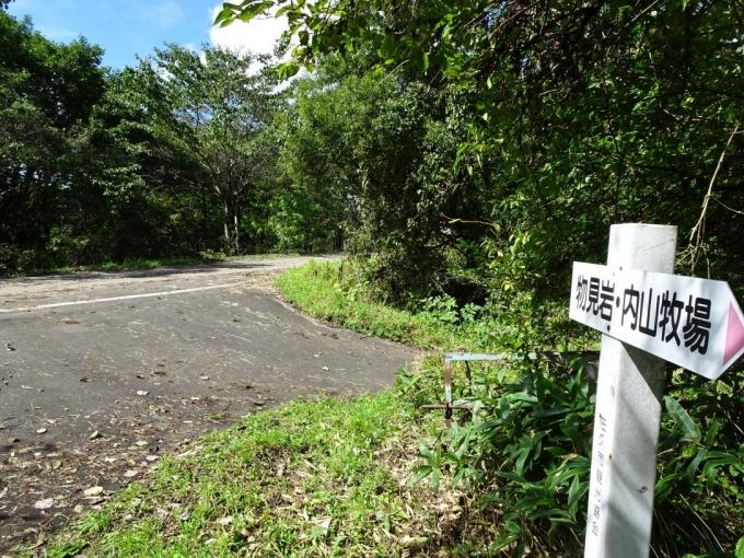 スーパー林道を横断