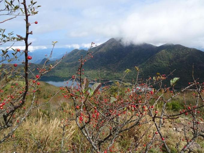ズミの実と黒檜山
