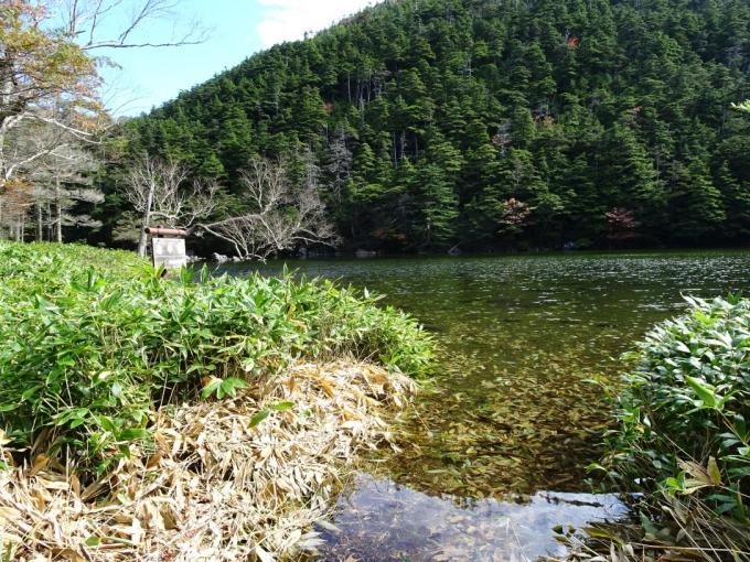 満水の亀甲池