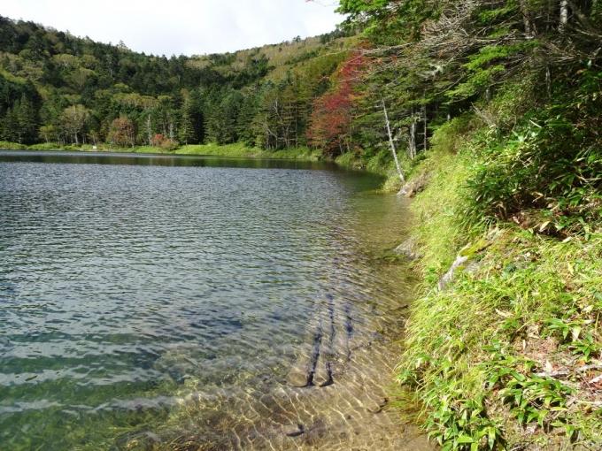 雌池の登山道は水没