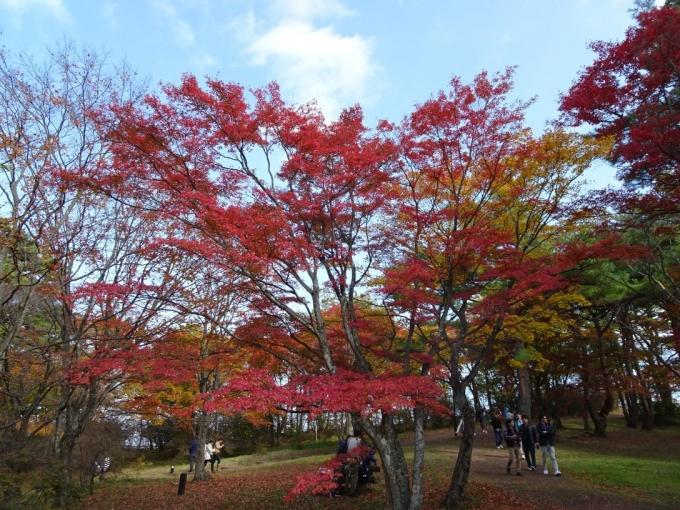 上ノ山公園2