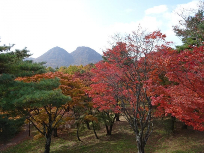 上ノ山公園5