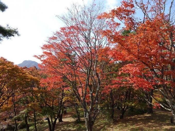 上ノ山公園6