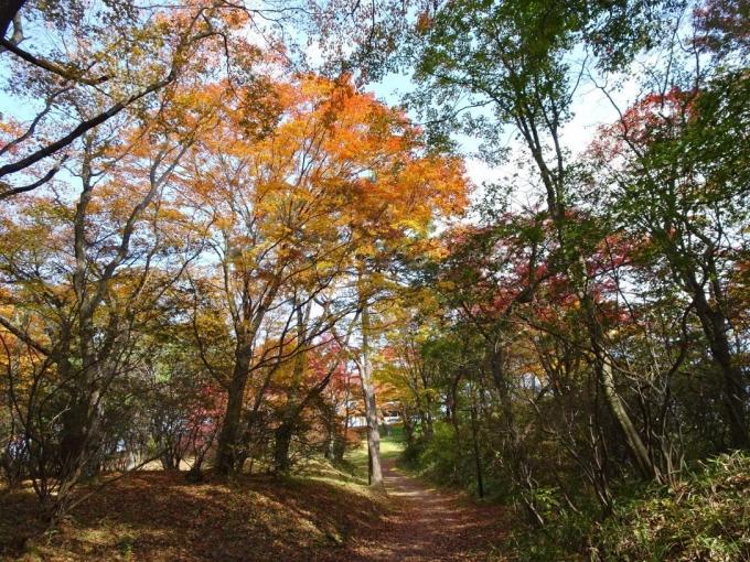 上ノ山公園8