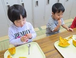 かぼちゃ種取り③