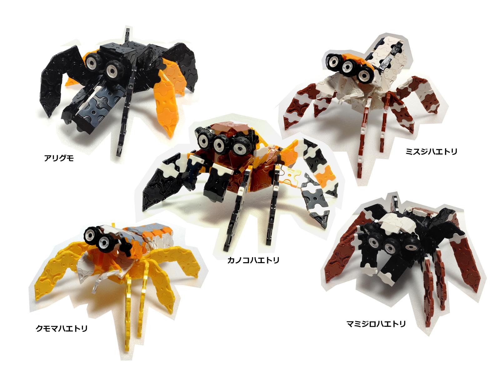 Spider5_IMG.jpg