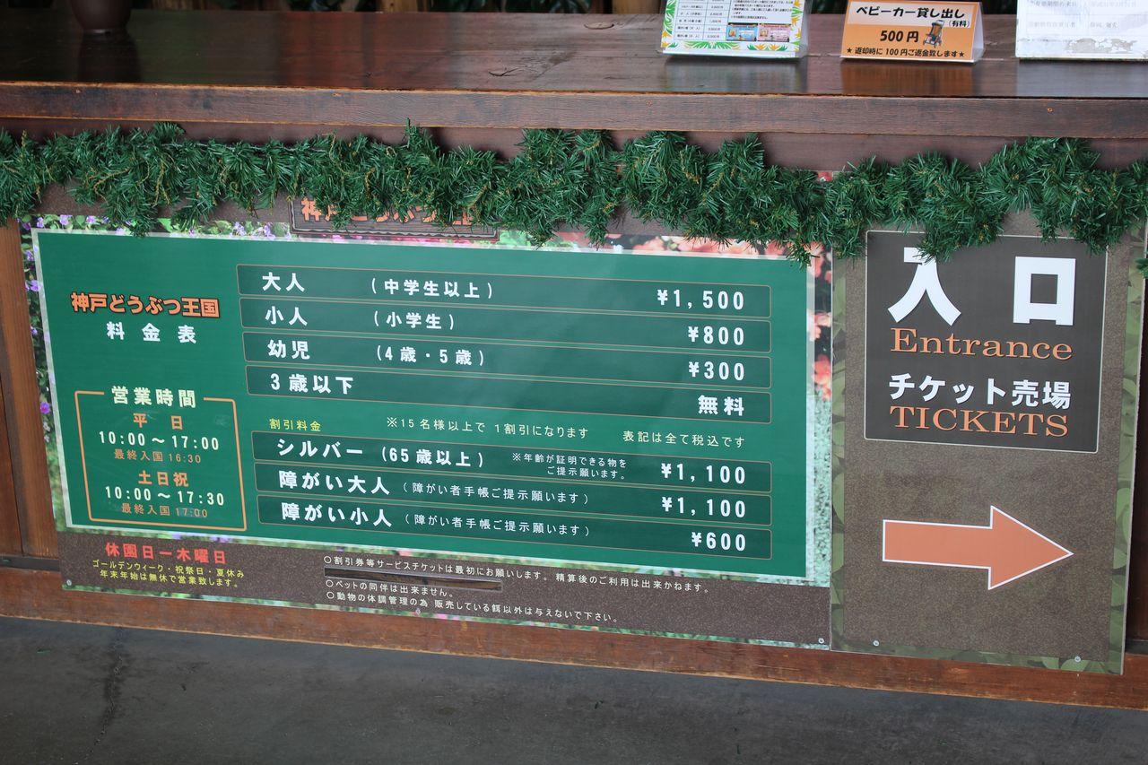 神戸どうぶつ王国-3