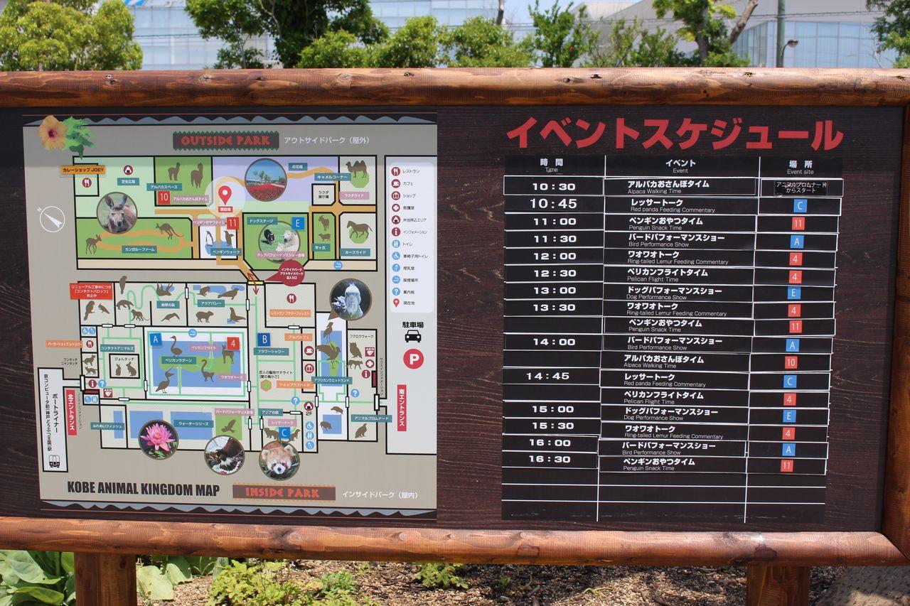 神戸どうぶつ王国-24