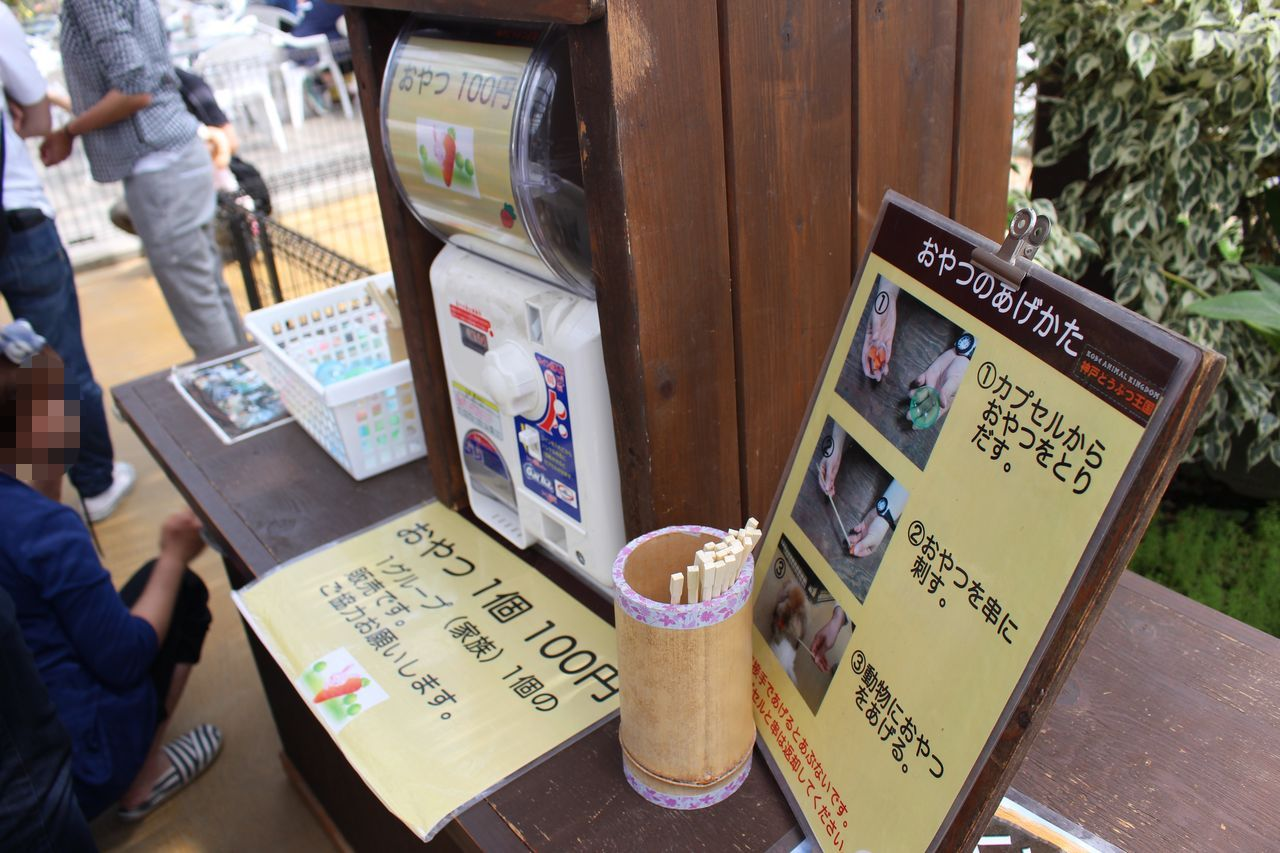 神戸どうぶつ王国-59