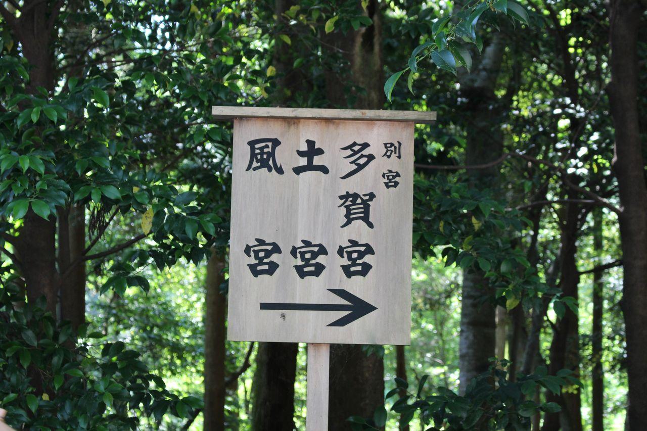 伊勢神宮(外宮)2016夏-18