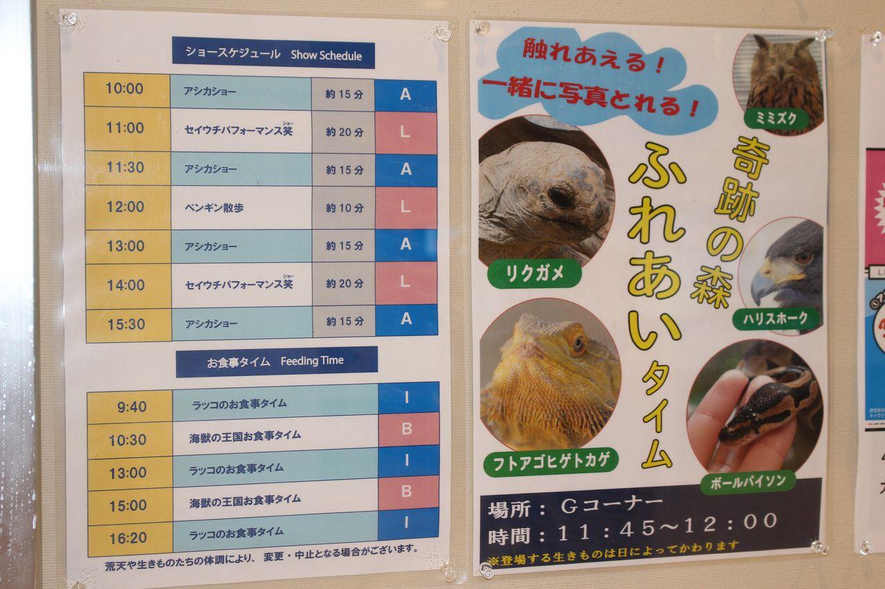 鳥羽水族館-8