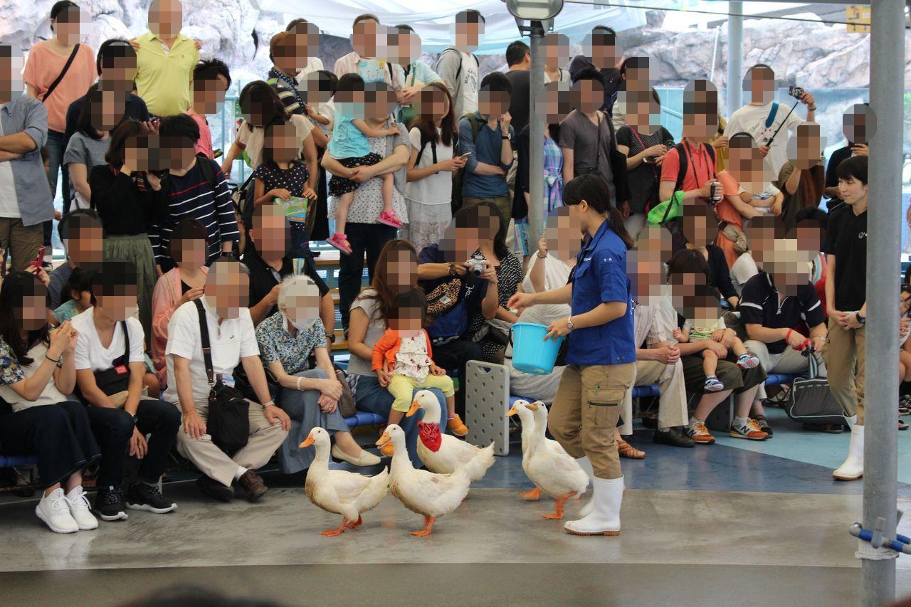 鳥羽水族館-28
