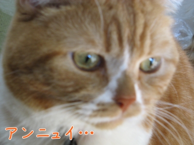 19800101-000057-01.jpg