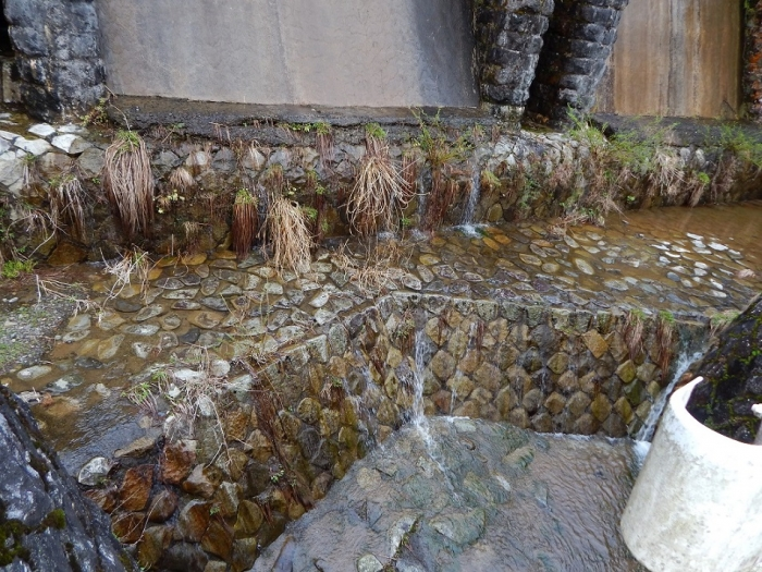 DSCN9953東杉原堰堤